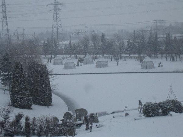 啤酒廠外雪景