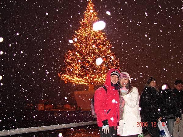 金森倉庫的巨大聖誕樹--正下著大雪