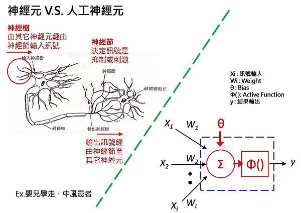 神經元 vs 人工神經元.jpg