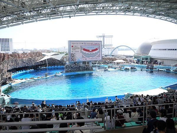 名古屋水族館3.jpg