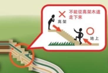 高架木步道_地面健行步道.JPG
