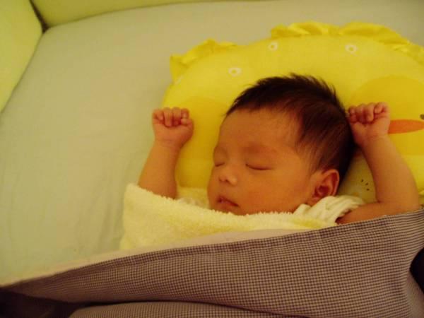 黃色小鴨的枕頭