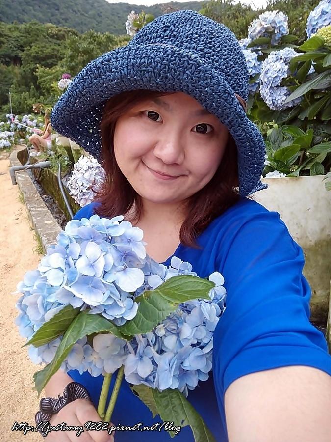 陽明山冷水坑+高家繡球花田_170626_0038.jpg