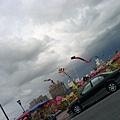 這是我在人文公園的天空.JPG