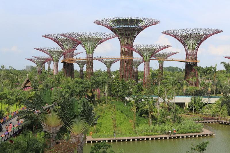 Supertree_Grove,_Gardens_by_the_Bay,_Singapore_-_20120712-02[1]_調整大小.jpg