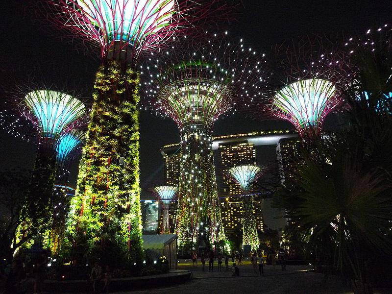 1280px-Supertree_Grove,_Gardens_by_the_Bay,_Singapore_-_20120630-04[1]_調整大小.jpg