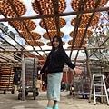 2017122 新竹柿園遊_171211_0024_調整大小.jpg