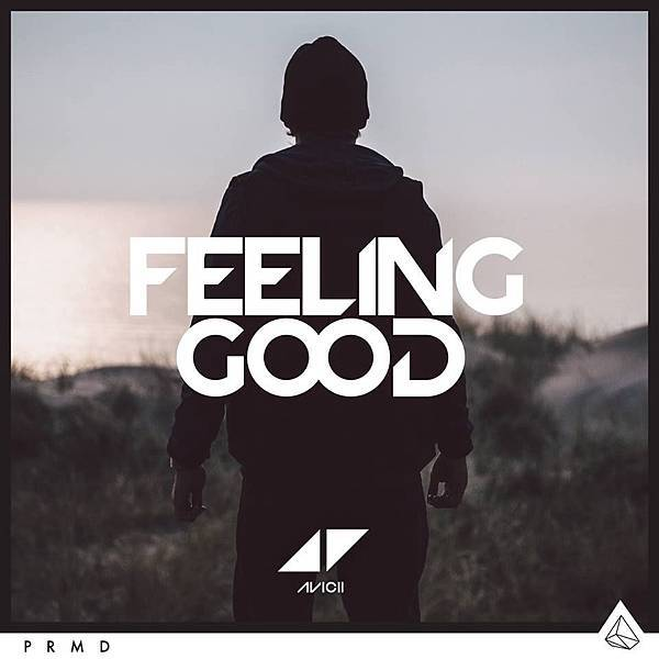 avicii feeling good