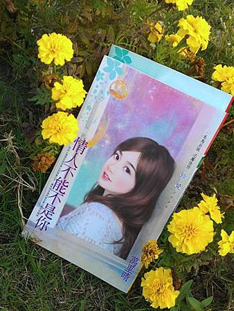 IMAG2512(66折使用)