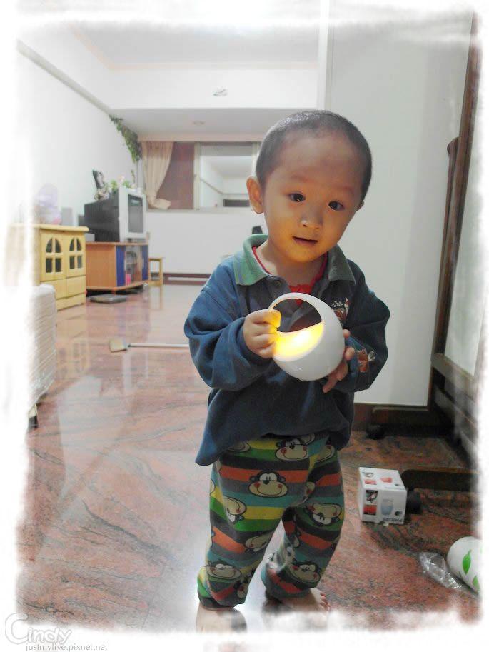 SAM_9113.jpg