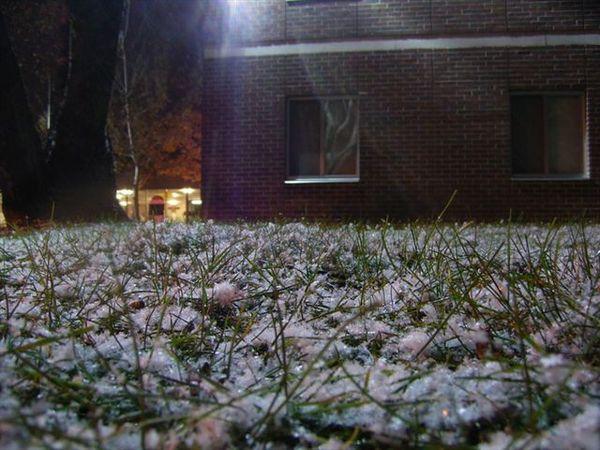 草地上積雪