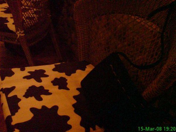 撲著乳牛花紋墊的椅子