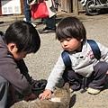 小朋友在摸路邊的小貓。天氣太舒服了,小貓躺在路上曬太陽...喔!日本的小朋友臉都胖嘟嘟的,好可愛喔!!