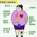 健安丰久仙 天然解酒藥 常見的肝損傷臨床症狀表現