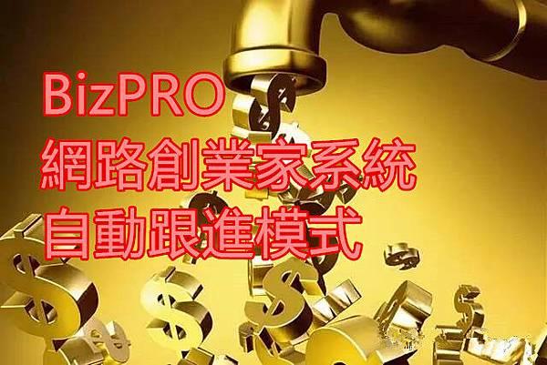 BizPRO網路創業家系統自動跟進模式