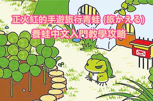 養蛙中文入門教學攻略