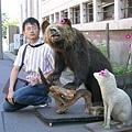 店門口的熊和狐狸