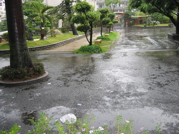 雨中的校園