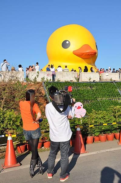 黃色小鴨 (4).JPG