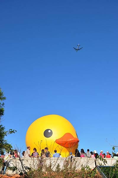 黃色小鴨 (6).jpg