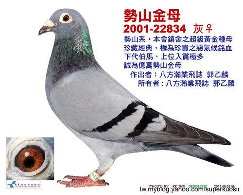 【勢山金母】2011.06月留影