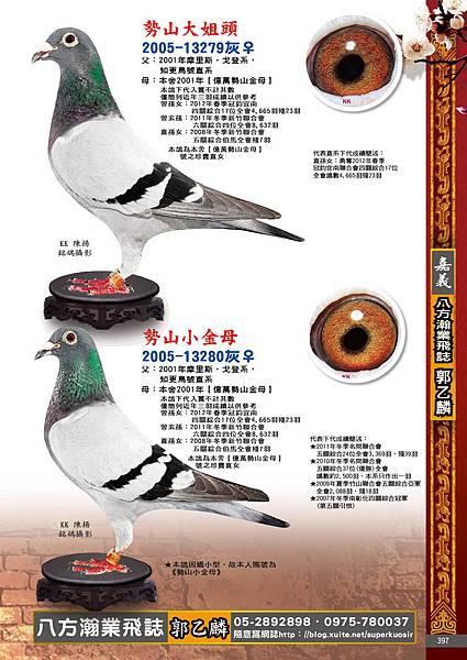 2014典傳鴿藝10