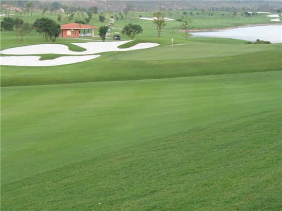 Tam Dao Golf-04.jpg