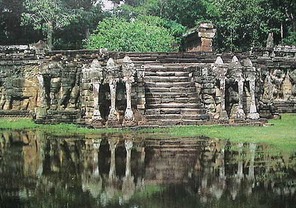 Elephant Terrace.jpg