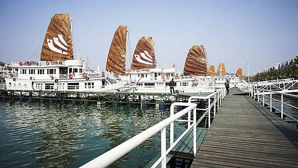 Bhaya Cruises---.jpg