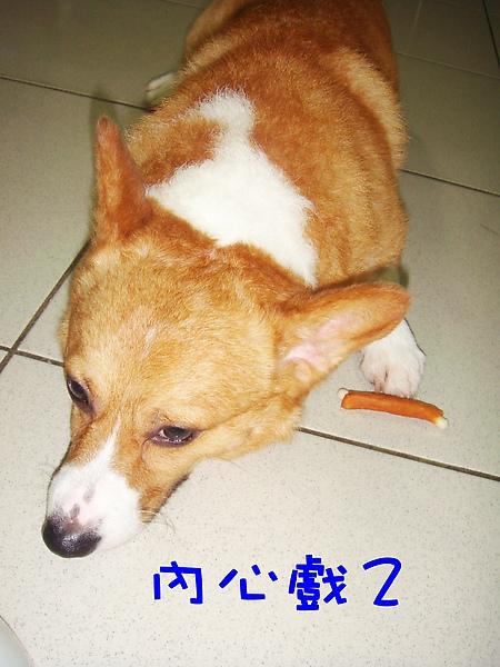 試吃零食10.JPG