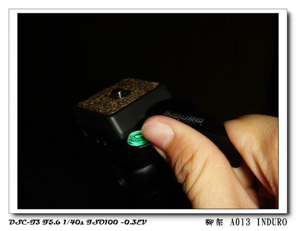 DSC00159.jpg