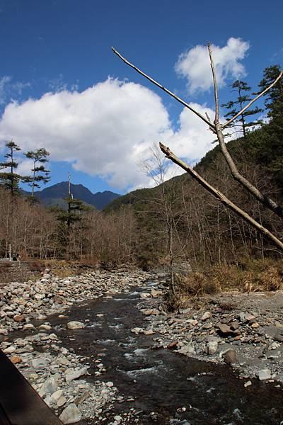 DPP_2014.2.23武陵櫻花祭(原始版)037.JPG