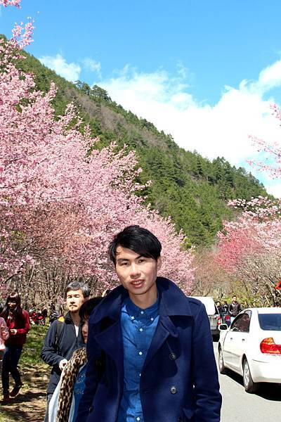 DPP_2014.2.23武陵櫻花祭(原始版)049.JPG