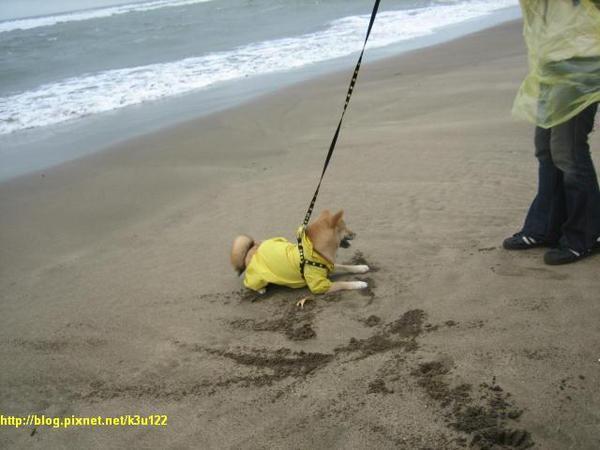 第一次在沙灘玩