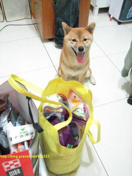 兩袋都是給我吃的嗎?