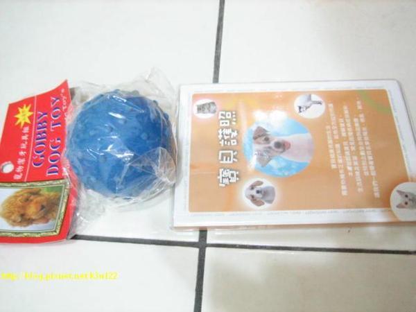 流浪動物玩具球送寶貝護照