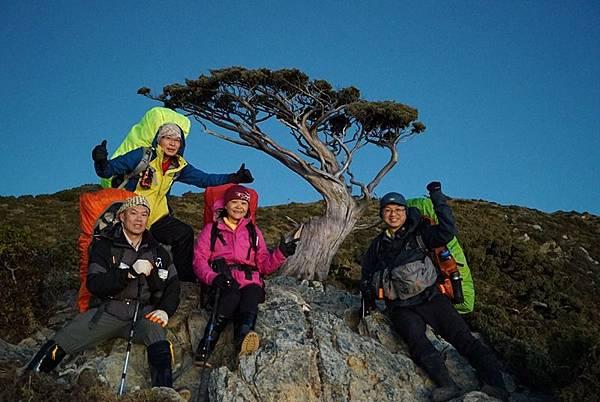 向陽名樹1.jpg