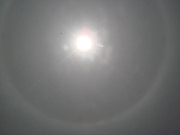 【99年4月放生】太陽外圍出現日暈現象(透過太陽眼鏡拍攝).JPG