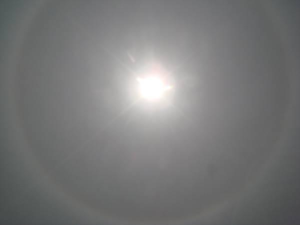 【99年4月放生】光環(透過太陽眼鏡拍攝((3).JPG