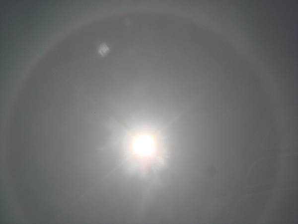 【99年4月放生】日暈(透過太陽眼鏡拍攝) (2).JPG