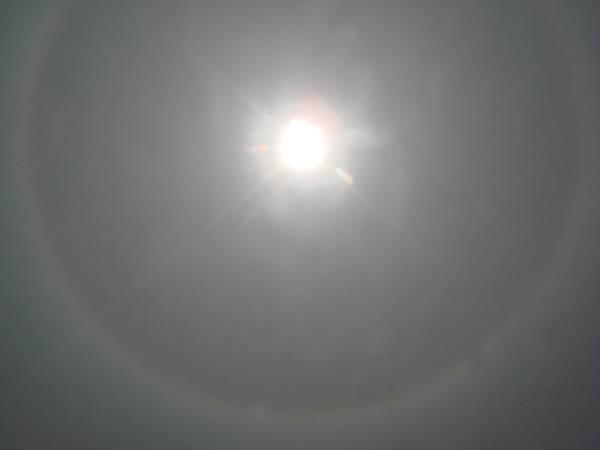 【99年4月放生】日暈(透過太陽眼鏡拍攝)(1).JPG
