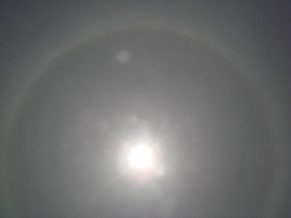 【99年4月放生】日暈的光環無法全部入鏡(透過太陽眼鏡拍攝).JPG