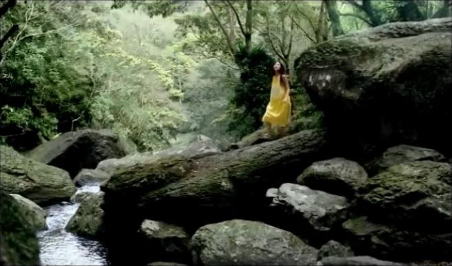 爽健美茶03.jpg