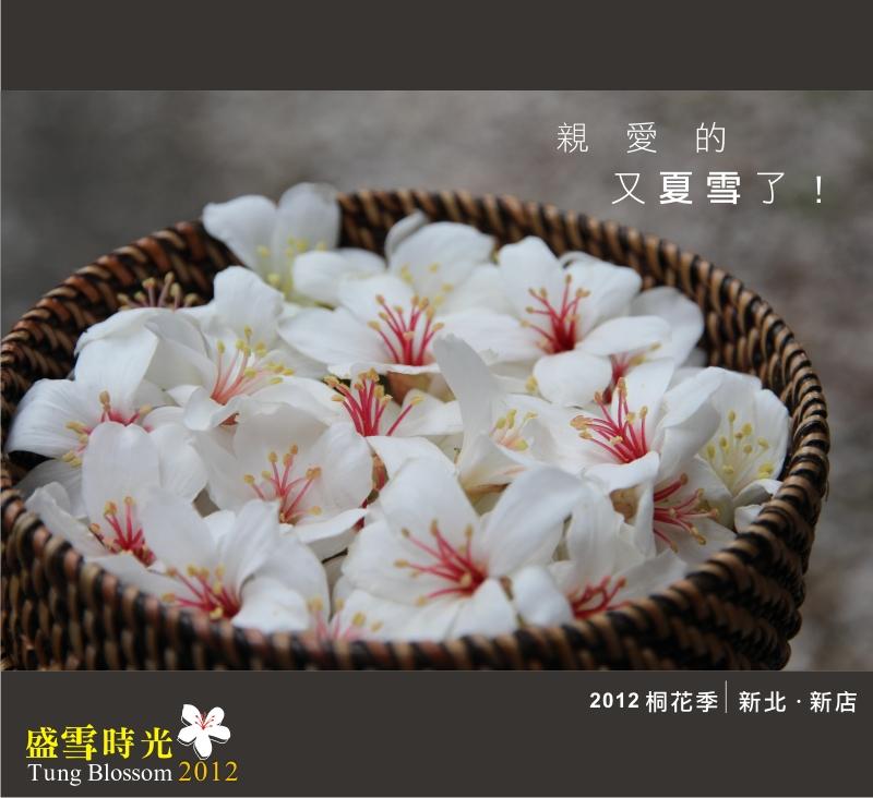 盛雪時光2012