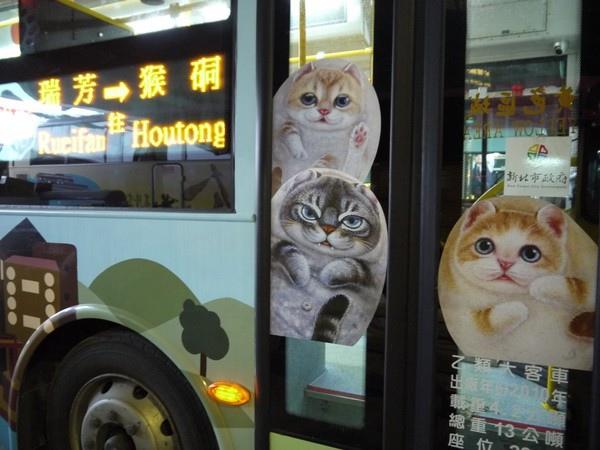 猴硐貓公車4