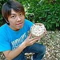 2010桐花季