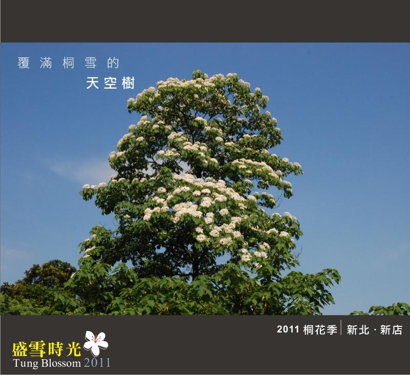 盛雪時光2011-6.jpg