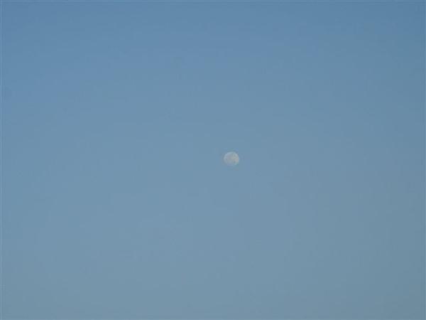 月亮升到半空了