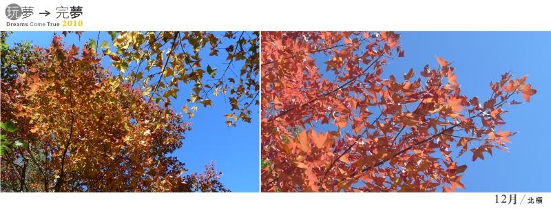 走過2010-12-5.jpg