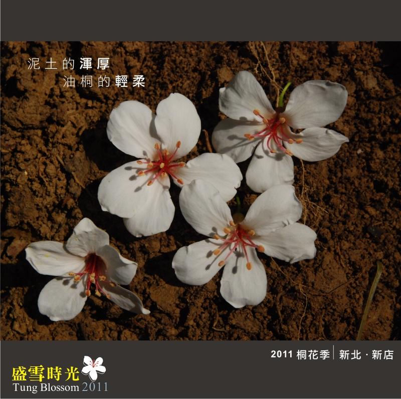 盛雪時光2011-19.jpg